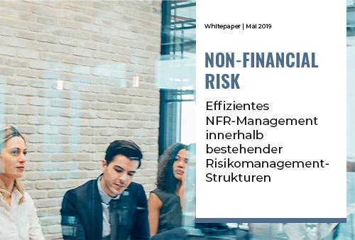 Effizientes NFR-Management innerhalb bestehender Risikomanagement-Strukturen