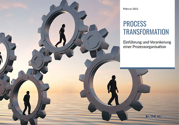 Titelbild_Best Practice Lösungen_Einführung und Verankerung einer Prozessorganisation_2