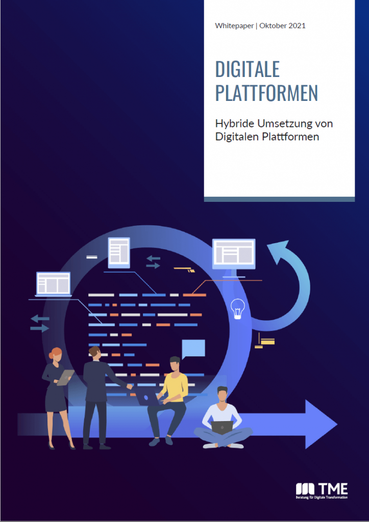 Detailbild_Whitepaper_Hybride Umsetzung von Digitalen Plattformen